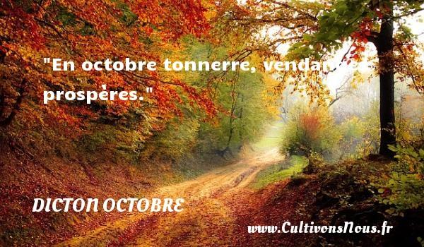 En octobre tonnerre, vendanges prospères. Un dicton octobre