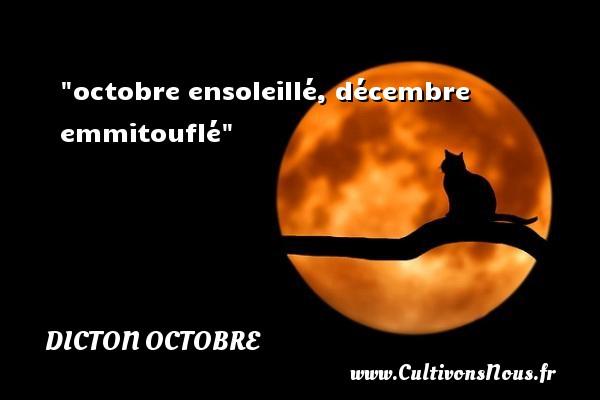 octobre ensoleillé, décembre emmitouflé Un dicton octobre