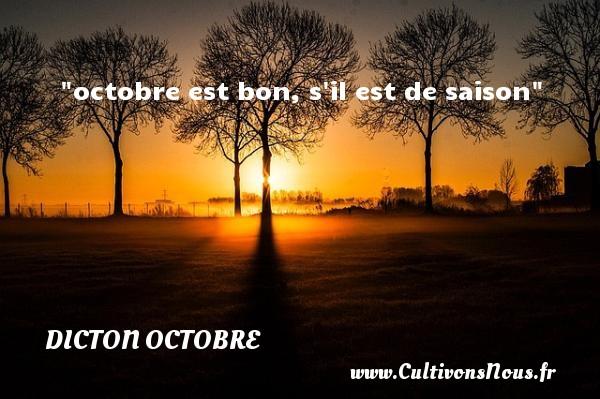 octobre est bon, s il est de saison Un dicton octobre