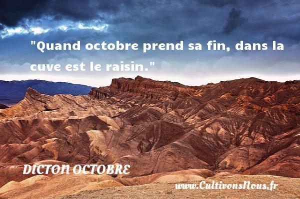 Quand octobre prend sa fin, dans la cuve est le raisin. Un dicton octobre
