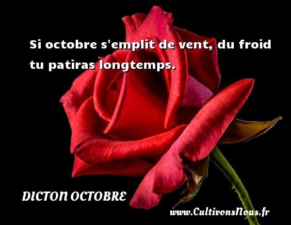 Si octobre s emplit de vent, du froid tu patiras longtemps. Un dicton octobre
