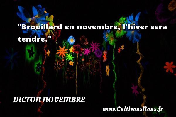 Dicton novembre - Brouillard en novembre, l hiver sera tendre. Un dicton novembre DICTON NOVEMBRE