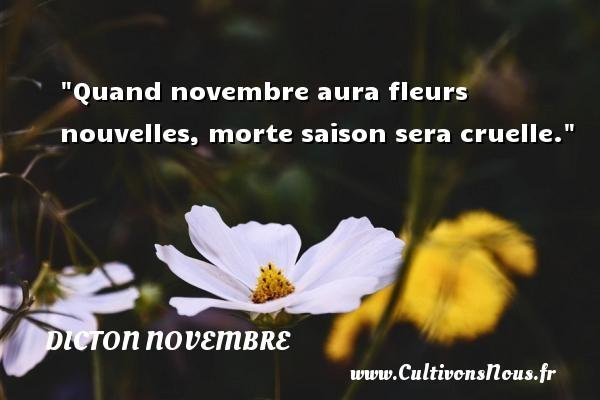 Dicton novembre - Quand novembre aura fleurs nouvelles, morte saison sera cruelle. Un dicton novembre DICTON NOVEMBRE
