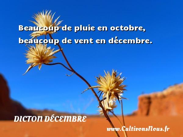 Beaucoup de pluie en octobre, beaucoup de vent en décembre. Un dicton décembre DICTON DÉCEMBRE