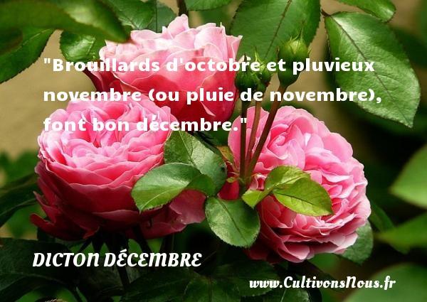 Brouillards d octobre et pluvieux novembre (ou pluie de novembre), font bon décembre. Un dicton décembre DICTON DÉCEMBRE