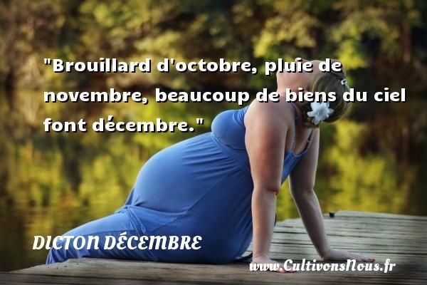 Brouillard d octobre, pluie de novembre, beaucoup de biens du ciel font décembre. Un dicton décembre DICTON DÉCEMBRE