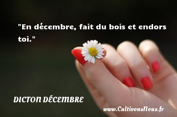 En décembre, fait du bois et endors toi. Un dicton décembre DICTON DÉCEMBRE