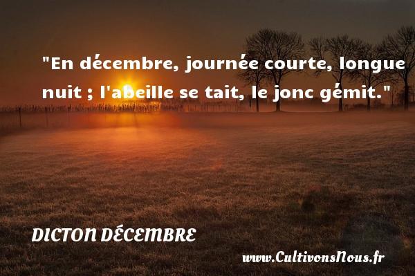 En décembre, journée courte, longue nuit ; l abeille se tait, le jonc gémit. Un dicton décembre DICTON DÉCEMBRE