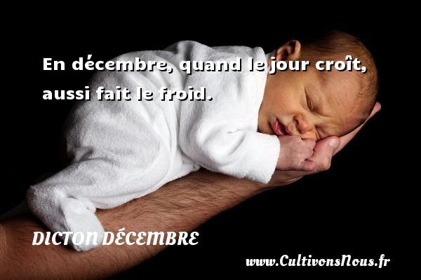 En décembre, quand le jour croît, aussi fait le froid. Un dicton décembre DICTON DÉCEMBRE