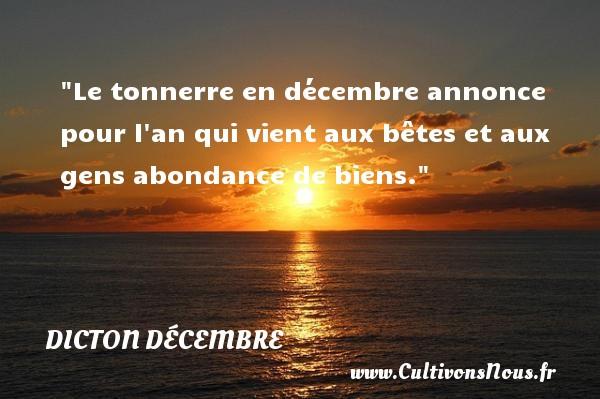 Le tonnerre en décembre annonce pour l an qui vient aux bêtes et aux gens abondance de biens. Un dicton décembre DICTON DÉCEMBRE