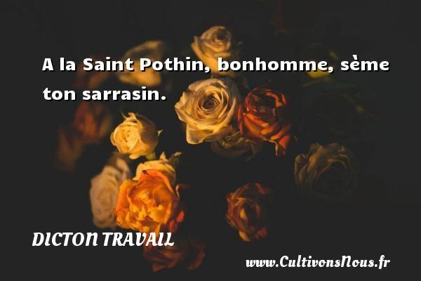 Dicton travail - A la Saint Pothin, bonhomme, sème ton sarrasin. Un dicton travail DICTON TRAVAIL