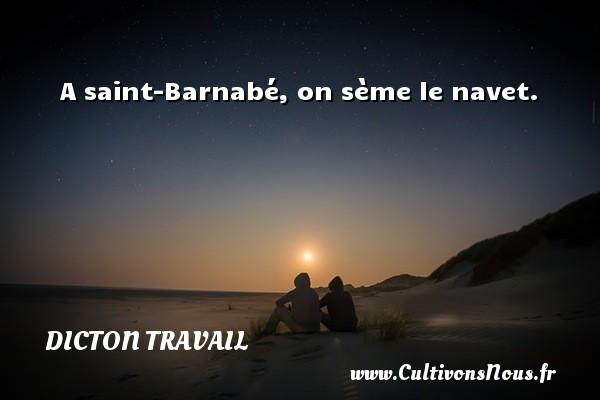 Dicton travail - A saint-Barnabé, on sème le navet. Un dicton travail DICTON TRAVAIL