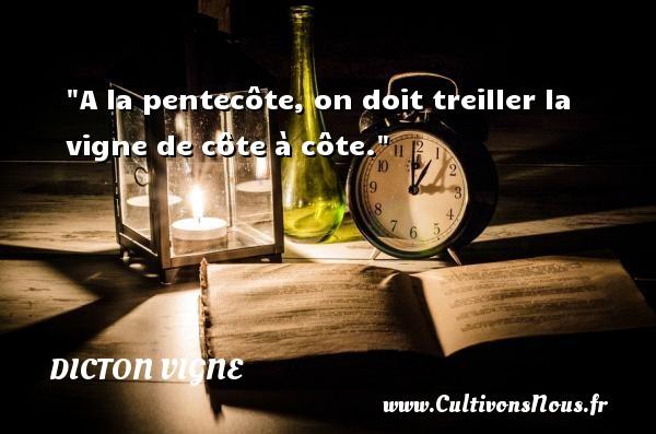 A la pentecôte, on doit treiller la vigne de côte à côte. Un dicton vigne DICTON VIGNE