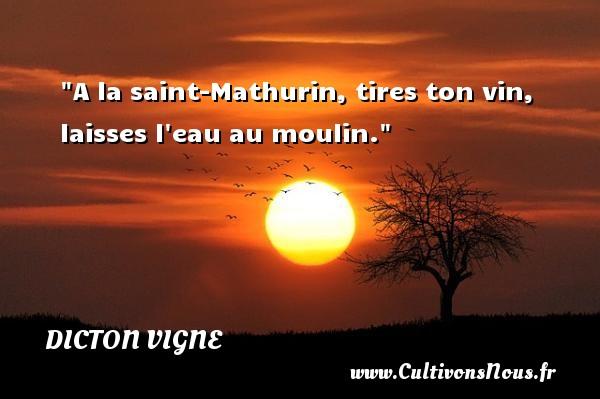 A la saint-Mathurin, tires ton vin, laisses l eau au moulin. Un dicton vigne