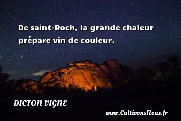 De saint-Roch, la grande chaleur prépare vin de couleur. Un dicton vigne