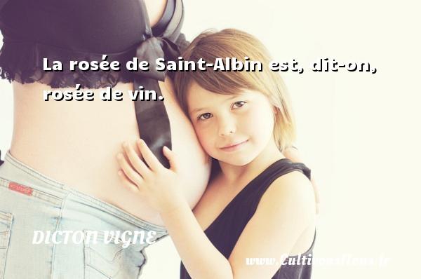 La rosée de Saint-Albin est, dit-on, rosée de vin. Un dicton vigne