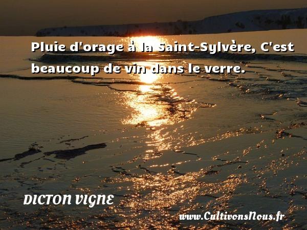 Pluie d orage à la Saint-Sylvère, C est beaucoup de vin dans le verre. Un dicton vigne