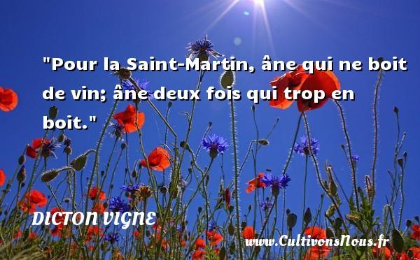 Pour la Saint-Martin, âne qui ne boit de vin; âne deux fois qui trop en boit. Un dicton vigne