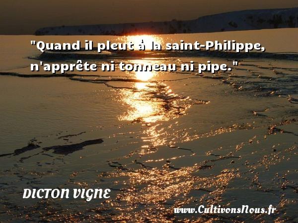 Quand il pleut à la saint-Philippe, n apprête ni tonneau ni pipe. Un dicton vigne