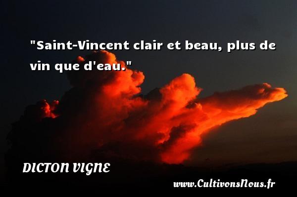 Saint-Vincent clair et beau, plus de vin que d eau. Un dicton vigne