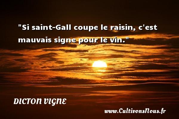 Si saint-Gall coupe le raisin, c est mauvais signe pour le vin. Un dicton vigne