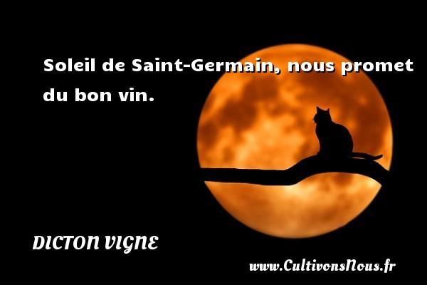 Soleil de Saint-Germain, nous promet du bon vin. Un dicton vigne
