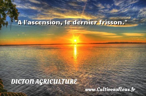 A l ascension, le dernier frisson. Un dicton agriculture