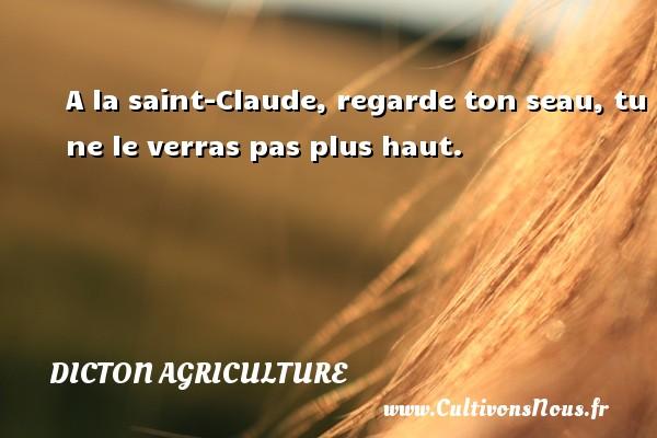 Dicton agriculture - A la saint-Claude, regarde ton seau, tu ne le verras pas plus haut. Un dicton agriculture DICTON AGRICULTURE