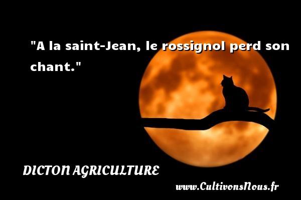 A la saint-Jean, le rossignol perd son chant. Un dicton agriculture