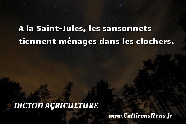 Dicton agriculture - A la Saint-Jules, les sansonnets tiennent ménages dans les clochers. Un dicton agriculture DICTON AGRICULTURE