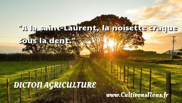 A la saint-Laurent, la noisette craque sous la dent. Un dicton agriculture