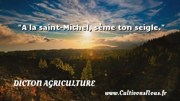 A la saint-Michel, sème ton seigle. Un dicton agriculture