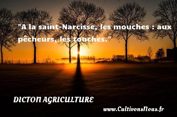 A la saint-Narcisse, les mouches : aux pêcheurs, les touches. Un dicton agriculture