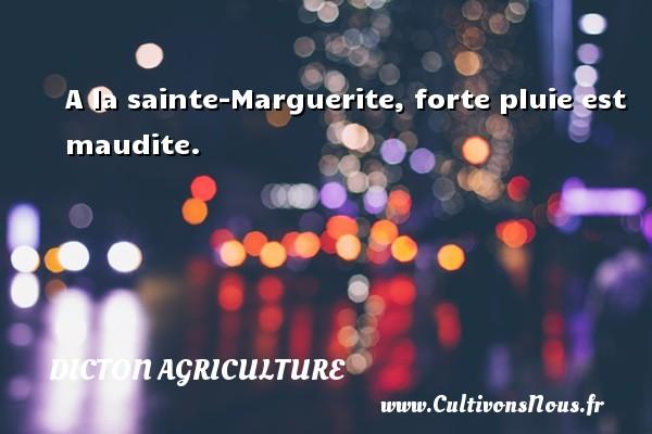 Dicton agriculture - A la sainte-Marguerite, forte pluie est maudite. Un dicton agriculture DICTON AGRICULTURE