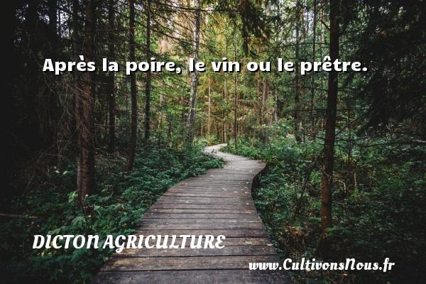 Dicton agriculture - Après la poire, le vin ou le prêtre. Un dicton agriculture DICTON AGRICULTURE