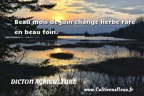 Beau mois de juin change herbe rare en beau foin. Un dicton agriculture