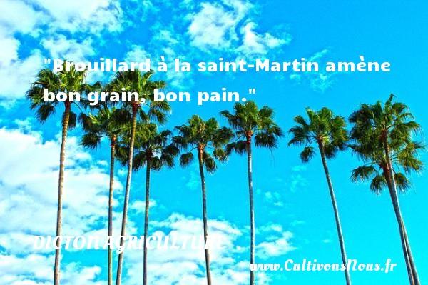 Brouillard à la saint-Martin amène bon grain, bon pain. Un dicton agriculture