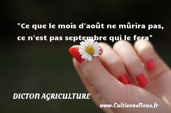 Ce que le mois d août ne mûrira pas, ce n est pas septembre qui le fera Un dicton agriculture