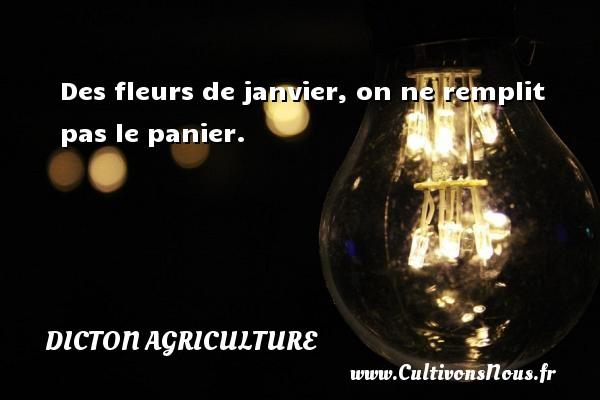 Dicton agriculture - Des fleurs de janvier, on ne remplit pas le panier. Un dicton agriculture DICTON AGRICULTURE