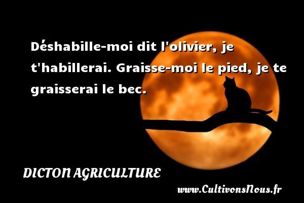 Dicton agriculture - Déshabille-moi dit l olivier, je t habillerai. Graisse-moi le pied, je te graisserai le bec. Un dicton agriculture DICTON AGRICULTURE