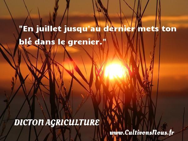 En juillet jusqu au dernier mets ton blé dans le grenier. Un dicton agriculture