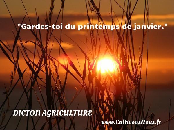 Gardes-toi du printemps de janvier. Un dicton agriculture