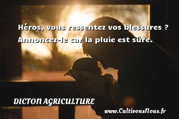 Dicton agriculture - Héros, vous ressentez vos blessures ? Annoncez-le car la pluie est sûre. Un dicton agriculture DICTON AGRICULTURE