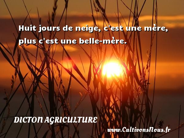 Dicton agriculture - Huit jours de neige, c est une mère, plus c est une belle-mère. Un dicton agriculture DICTON AGRICULTURE