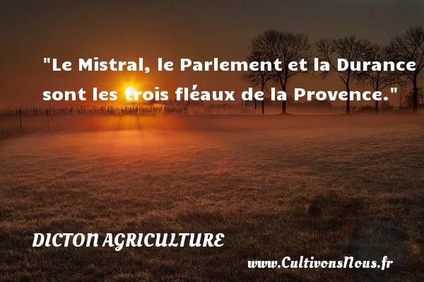 Le Mistral, le Parlement et la Durance sont les trois fléaux de la Provence. Un dicton agriculture