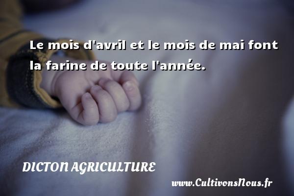 Dicton agriculture - Le mois d avril et le mois de mai font la farine de toute l année. Un dicton agriculture DICTON AGRICULTURE