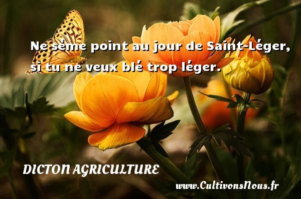 Ne sème point au jour de Saint-Léger, si tu ne veux blé trop léger. Un dicton agriculture