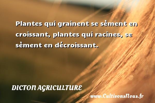 Plantes qui grainent se sèment en croissant, plantes qui racines, se sèment en décroissant. Un dicton agriculture