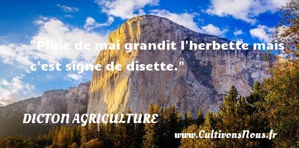 Pluie de mai grandit l herbette mais c est signe de disette. Un dicton agriculture