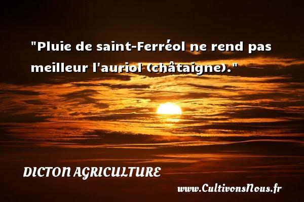 Pluie de saint-Ferréol ne rend pas meilleur l auriol (châtaigne). Un dicton agriculture